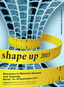 2015_ShapeUpPoster